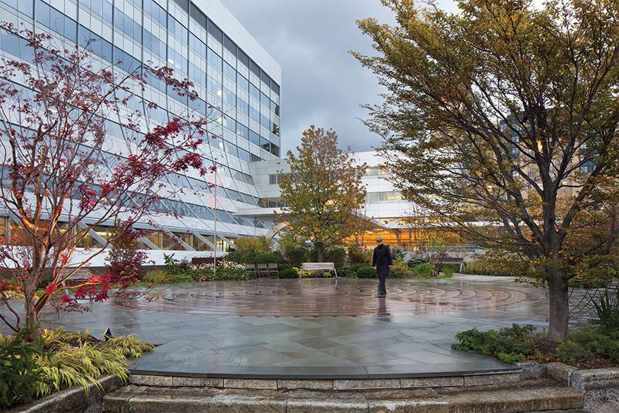 The author walking the labyrinth at the Schneider Healing Garden at Seidman Cancer Center.