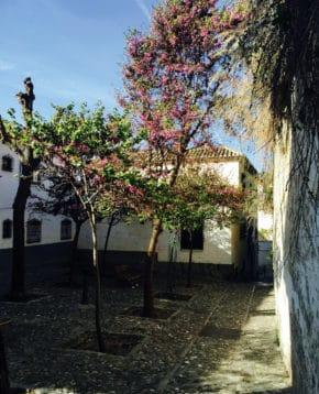 Courtyard in the Albaicin, Granada, Spain